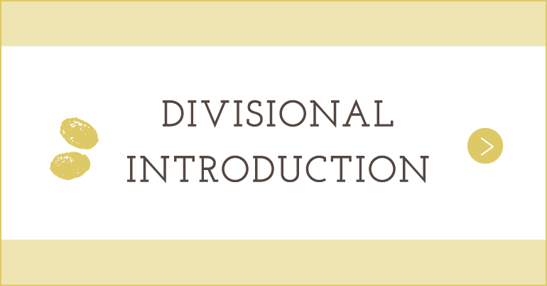 DIVISIONAL INTRODUCTION